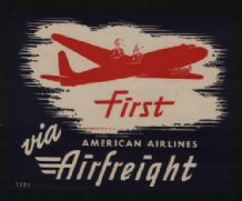 Airline label luggage American Airlines #390
